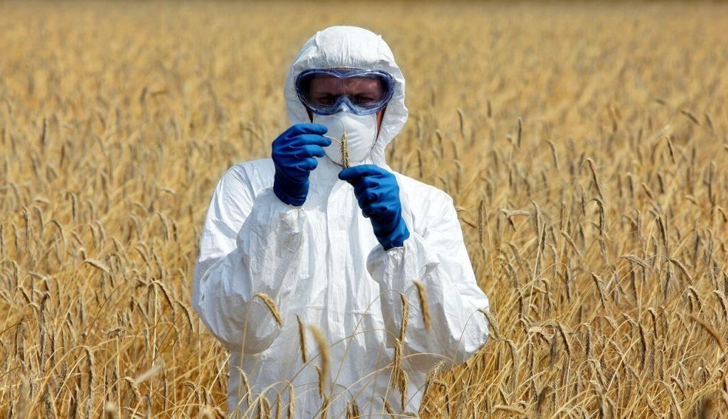 Профессия «ГМО-Агроном»